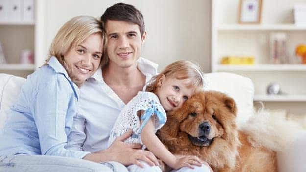 Wills & Trusts dog-young-family Direct Wills Tilbury